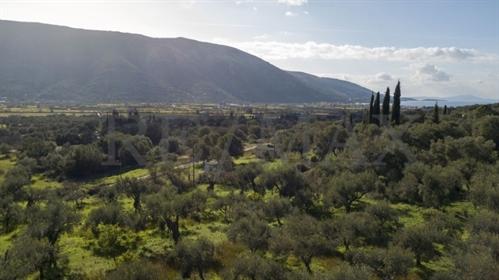 (Προς Πώληση) Αξιοποιήσιμη Γη Οικόπεδο    Ν. Θεσπρωτίας/Σύβοτα - 500 τ.μ, 20.000€