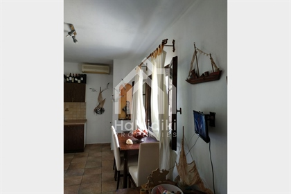 Μονοκατοικία Χαλκιδικη Σιθωνια