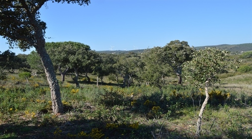 Large countryside plot with ruin to build house for sale in Lagos Algarve