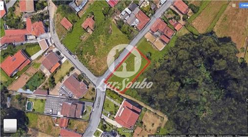Maison : 4000 m²