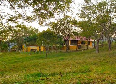 Guanacaste - Propiedad rural en venta