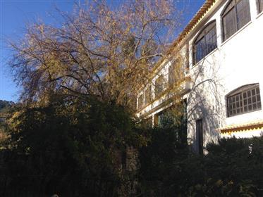 Quinta - Miranda do Corvo - Coimbra