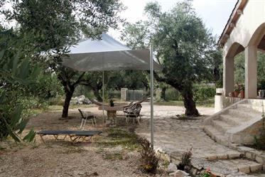 Ecological villa
