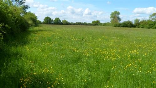 Fermette restaurée sur 9 ha de prairie