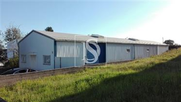 Local comercial: 765 m²