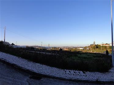 Lote de Terreno Urbano - 2 moradias geminadas - Évora de Alcobaça