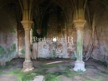 Mosteiro de Cister Séc. Xii