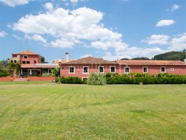 Quinta com Casa Senhorial recuperada com piscina e jardins