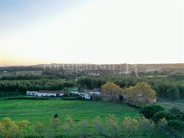 Maison : 804 m²
