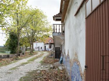 Quinta com 9,4 ha, na região da Azambuja