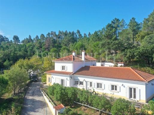 Maison : 262 m²