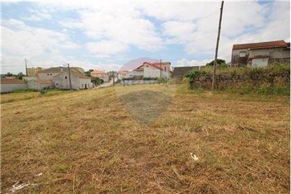 Terreno: 890 m²