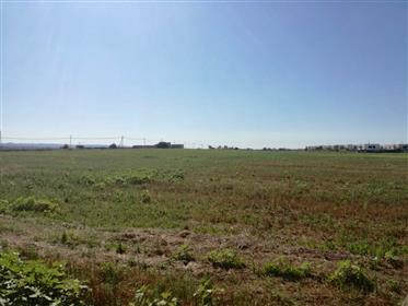 Vendita Terreno Edificabile Vista Mare - Pantanagianni