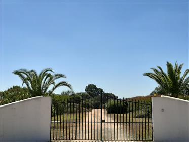 Vende dum monte alentejano na costa Vicentina - Portugal