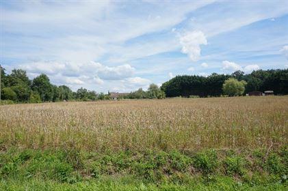 Terrain Montereau 7491 m² T-0 à vendre, 146 000 €   Orpi