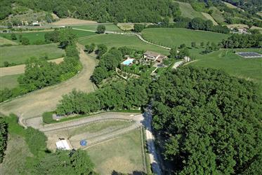 Villa di pregio con piscina, parco e terreno