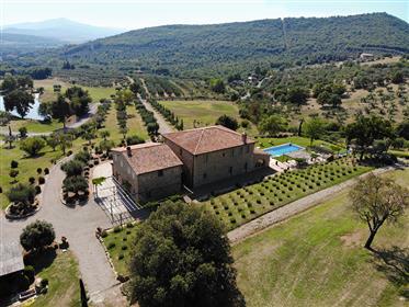 Prestigiosa villa con piscina e uliveto