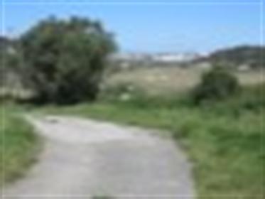 Quinta com 7 ha de terreno em Vila Franca de Xira- Lisboa a 40 minutos - Homes Portugal - Ref: 583-1
