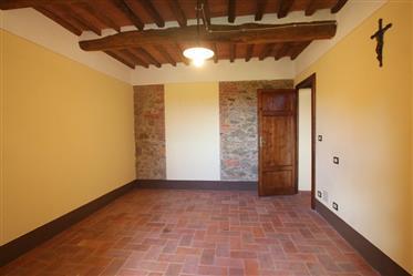 Huis: 350 m²