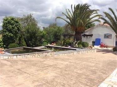 Huis: 229 m²