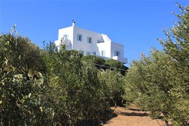 Pour les amateurs d'authentiques petites îles grecques