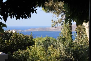 Propriété d'exception 8500m2,vue mer , piscine, tennis ,2 sources permanentes