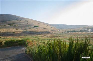 Land in Yavneel