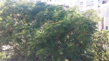 שקט, אחורי & במיקום מרכזי ב- Arlozrov, תל אביב