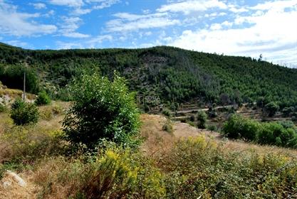 Terreno Rústico (39.760 m2), c/ água de mina e deslumbrantes...