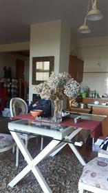 House: 134 m²