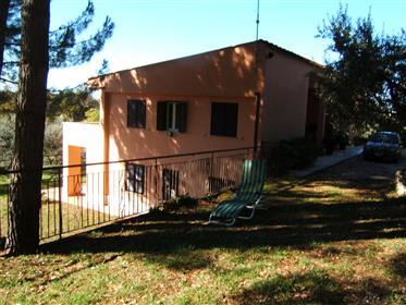 Maison : 310 m²