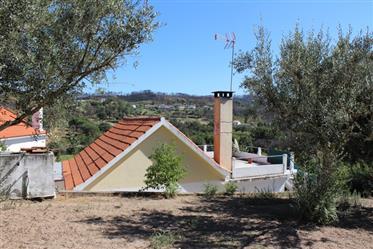 Maison individuelle avec des terres fertiles, Covas, Tábua
