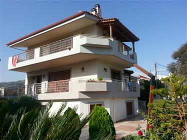 Maison d'été dans le village de Longos Achaia Grèce