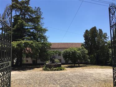 Quinta Das Palmeiras (Manor House)