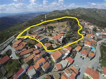 Grande Propriedade localizada no Vale do Douro e perto de Tabuaço está à venda.