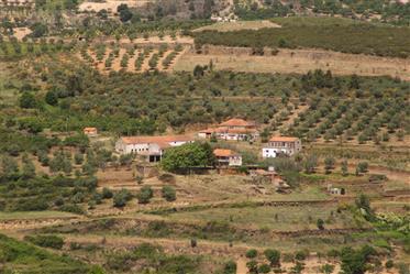 Arrendamentos de férias de projeto de investimento em Penedono