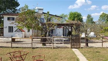 Villa de campo com piscina a 25 km de Roma e a terra