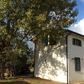 Country villa with land and pool at 25 km from Rome