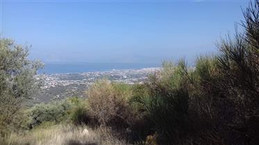 Land mit herrlichem Blick auf das Meer!