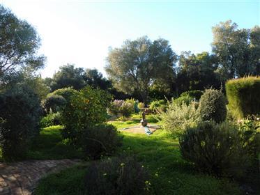 Πώληση του σπιτιού στον ήλιο - Πορτογαλία