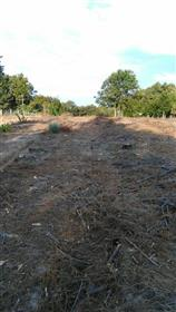 Sabugal - Terreno - Construção de Moradia