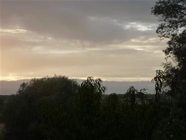 Quinta באלנטחו לאחר באבורה