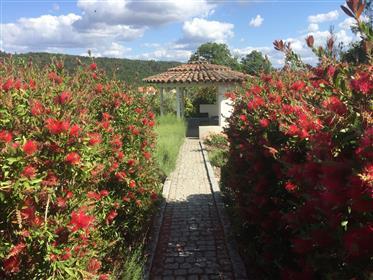 Te koop: ons droomhuis in Noord-oost Portugal