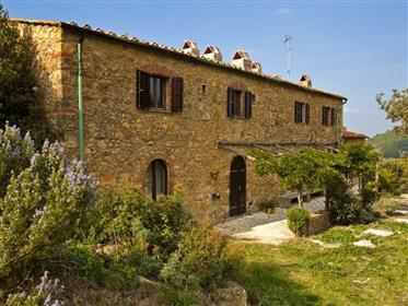 Uimitoare casa de piatra de la 1850