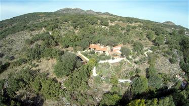 Eco Tourist Resort in het paradijs setting