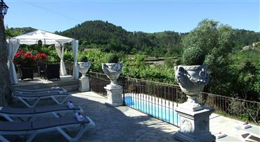 Charming Castle / Manor home for sale in Portugal