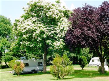Camping/Restaurant in Bourgogne (portes de Morvan)