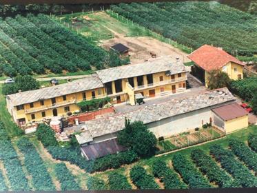 Azienda Agricola Pinerolo (To)