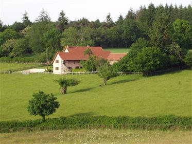 Schönes Zuhause