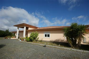 Farm with 9 Hectares and luxury house